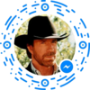 chatbot, chatterbot, conversational agent, virtual agent Chuck Norris Chatbot